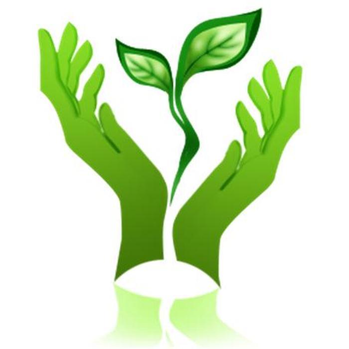 ekologicheskij-pasport-detskogo-sada